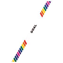 【エバニュー】 カラーゴールインテープ